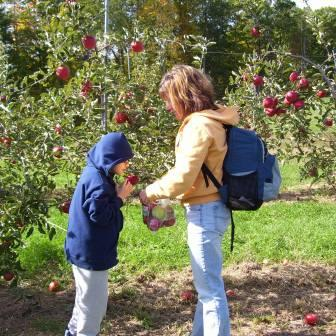 a student and instructor picking apples